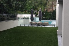 Backyard_Pool 4